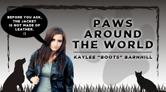 Paws Around The World