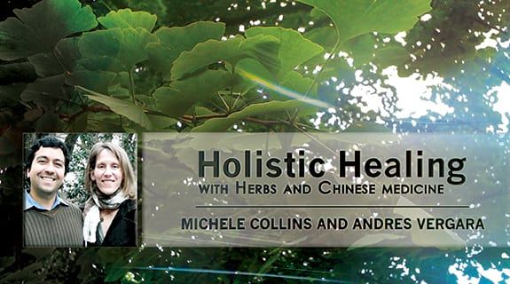 Holistic Healing with Herbs and Chinese Medicine