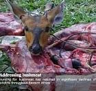 Bushmeat Free East Africa Network (BEAN)