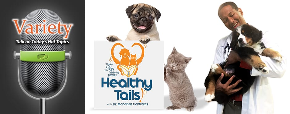 https://www.voiceamerica.com/content/images/station_images/52/banner/portal-healthytails.jpg